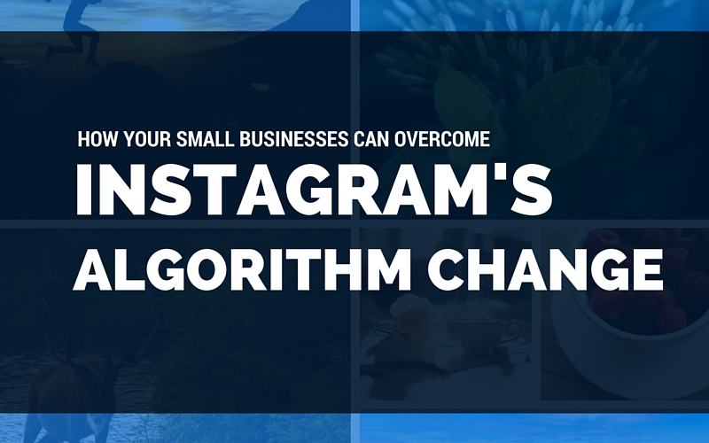 How can your small business cope with the newest update Instagram made to their feed?