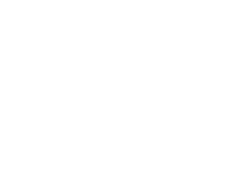 ecommerce carnegie museums