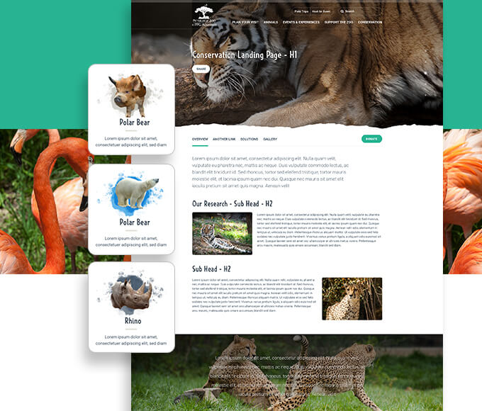 pittsbrugh zoo immersive design website design