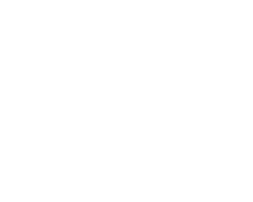 Pittsburgh Zoo website design
